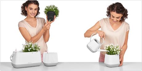 Maceta para plantar YULA