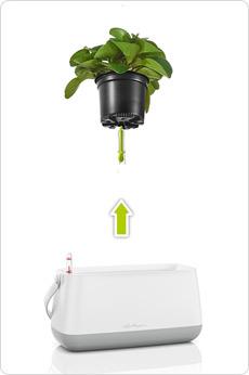 Maceta para plantar YULA - Probado sistema