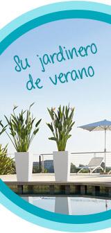 Tu cuidador de plantas para el verano: Sistema de riego de LECHUZA